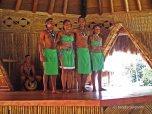 traditional dance (2)