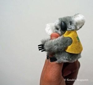 Australia - stuffed koala