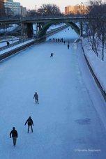 canal skating (4)