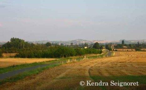 countryside (6)