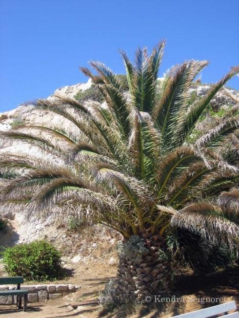 Marseilles - les calanques (1)