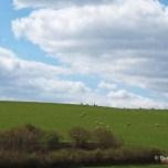 Restormel Castle - countryside