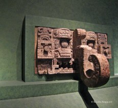 Anthropology Museum (3)