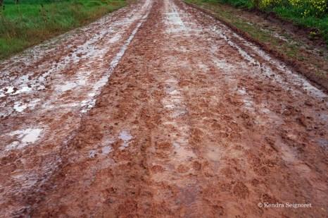 Dreaded heavy mud
