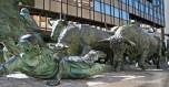 Bulls of Pamplona