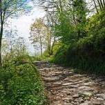 trail to La Faba