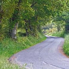 Spanish country roads