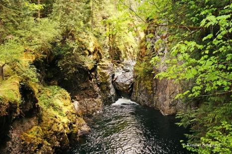 Englishman River Falls Provincial Park (10)