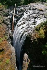 Englishman River Falls Provincial Park (2)