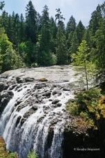 Englishman River Falls Provincial Park (3)