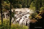 Englishman River Falls Provincial Park (4)