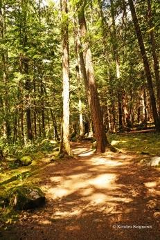 Englishman River Falls Provincial Park (5)