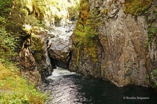 Englishman River Falls Provincial Park (7)
