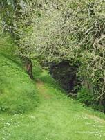 Launceston Castle pathway