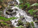 Eden Project - waterfall