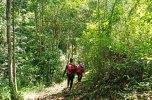 Yarra - hikers
