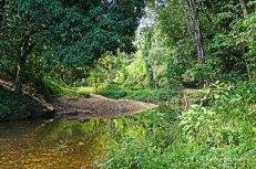 Yarra - river (1)