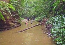 Yarra - river (7)