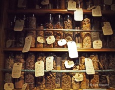 The Museum of Witchcraft