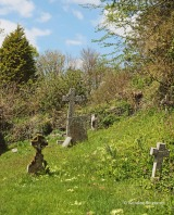 St. Neot - cemetery