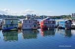 Victoria - harbour (1)