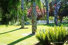 Victoria -Thunderbird park (5)