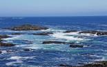 Wild Pacific Trail (15)