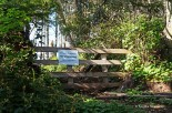Wild Pacific Trail (16)