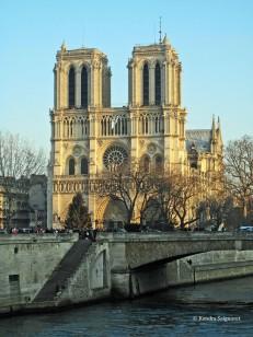 Cathedrale de Notre Dame (6)