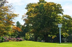 Mackenzie King Estate (20)
