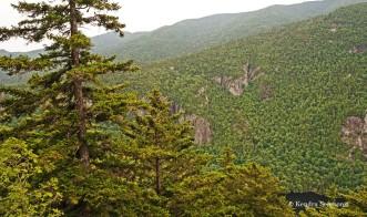 Adirondacks - view