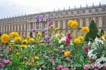 Versailles Gardens (1)