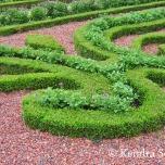 Versailles Gardens (20)